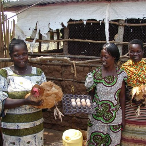 The women work hard to raise money as part of the women's farming project.